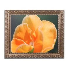 Trademark Fine Art Simple Compassion Canvas Art by Monica Mize, Gold Ornate Frame, Size: 16 x 20