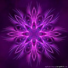 Fractals - By Mandala Purple Love, All Things Purple, Purple Rain, Shades Of Purple, Purple Candy, Purple Lilac, Fractal Design, Fractal Art, Magenta