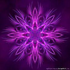 Purple fractal.