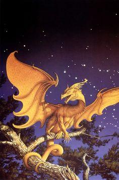 Gold Dragon against starry sky Big Dragon, Gold Dragon, Dragon Art, Magical Creatures, Fantasy Creatures, Fantasy Dragon, Fantasy Art, Chaos Dragon, Dragon Images