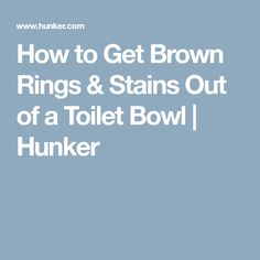 How To Clean Toilet Bowl Ring Without Scrubbing Toilet