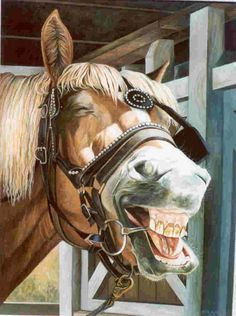 Horse Laugh by Michelle Gladish Animals, Horses, Animales, Animaux, Animal, Dieren, Animais, Horse