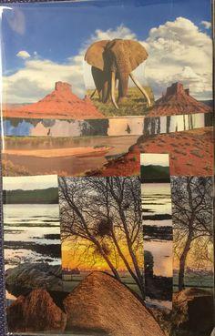 De rots en de olifant Zentangles, All Over The World, Cards, Painting, Inspiration, Design, Biblical Inspiration, Painting Art, Zen Tangles