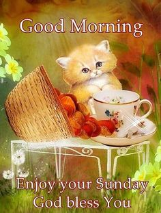 Have an awesome and blessed day. Sunday Morning Quotes, Good Morning Happy Sunday, Enjoy Your Sunday, Blessed Sunday, Morning Prayers, Good Morning Good Night, Sunday Greetings, Morning Greetings Quotes, Good Night Prayer