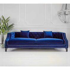 Imperial Sofa French Sofa in Royal Blue velvet