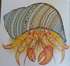 Visit The Post For More Art Lesson PlansAdult ColoringColoring BookDoodles