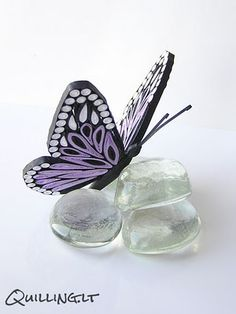 Butterfly - So beautiful