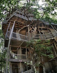 10-Story treehouse built by Horace Burgess. Took 15yrs. to build.