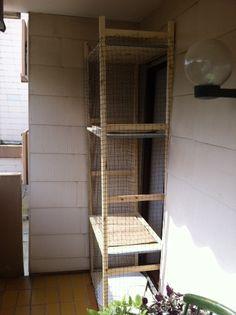 Cool cat enclosure
