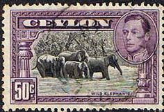 Ceylon 1938 King George VI Wild Elephants Fine Used                    SG 394 Scott 286b    Other Asian and British Commonwealth Stamps HERE!