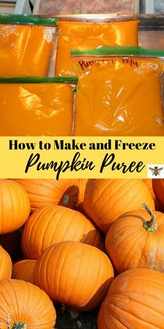 "Making your own fresh pumpkin puree is so easy to do let me show you how! Fresh pumpkin puree tastes so amazing in your recipes! Freeze the rest for later check out ""How to Make and Freeze Pumpkin Puree""! Fresh Pumpkin Recipes, Homemade Pumpkin Puree, Pureed Food Recipes, Canning Recipes, Fall Recipes, Canning Pumpkin Puree, How To Puree Pumpkin, Can You Freeze Pumpkin, Freezing Pumpkin"