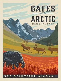 Gates of the Arctic National Park - Anderson Design Group has created an award-winning series of classic travel posters that celebrates the history and charm of America's greatest cities and national parks. Founder Joel Anderson directs a team of talented American National Parks, Us National Parks, Parc National, Vintage Advertisements, Vintage Ads, Party Vintage, Voyage Usa, Tourism Poster, National Park Posters