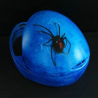 Black Widow airbrush on skydiving helmet  Source: www.aerografit.pl