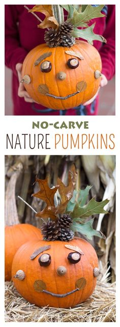 No Carve Nature Pumpkins | Fireflies and Mud Pies
