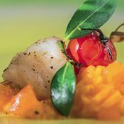 Lotte et purée carotte-abricot - une recette Allégé - Cuisine