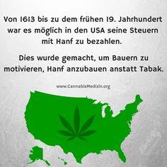 Von 1613 bis zu dem frühen 19. Jahrhundert, war Cannabis in den USA keine schlimme Droge, sondern ein wichtiges Wirtschaftsgut mit dem man sogar Steuern bezahlen konnte.  Cannabis Hanf Hemp Weed Marijuana Marihuana