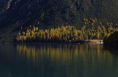 Autumn water mirror - null