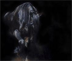 Tony O'Connor   Equine Artist   2014. I <3 this man.