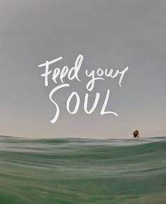 Feed your Soul - Descobre o Sentido