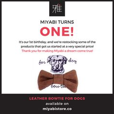 Dress up or dress down a preppy bowtie always does the trick. Hipster spectacles not included.   #dogs #ilovemydog #sgdogs #dogfashion #handmade #petaccessories #bowtie #leather #dogaccessories #magasinmiyabi #hbd