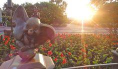 Walt Disney World spring break survival tips.