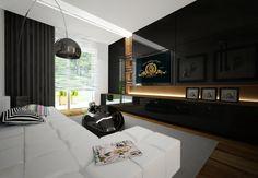 czarna_sciana_w_salonie_apartamentu_na_osiedlu_debowe_tarasy_w_katowicach.jpg (800×554)