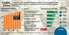 Enrollment in agriculture colleges has risen, as many agriculture-related jobs are projected to expand