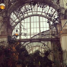 A meal in the beautiful foliage of Vienna's Palmenhaus Café www.interwien.com Tower, Meal, Building, Travel, Beautiful, Rook, Food, Viajes, Computer Case