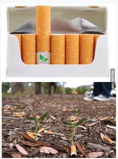 Biodegradable cigarette filters with flower seeds... Now this is creative.  :)