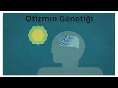 Otizmin Genetiği - YouTube