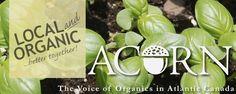 ACORN Atlantic Canada, Trade Association, Harvest Time, Acorn, October, Organic, Happy, Tassel, Ser Feliz