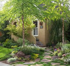 Charming front yard with a casual inexpensive walkway and lots of color and interest!