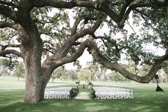 Ojai Valley Inn Wedding   Josh Elliott Photography   Sugar Branch Events   Little Hill Floral Design #garland #ceremony #outdoorwedding #eucalyptusgarland