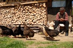 City People, Fire Powers, Human Nature, More Photos, Country Living, Romania, Firewood, Folk Art, Beautiful Places