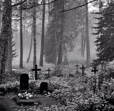 r/nyctohylophobia - Headstones in the forest Cemetery Headstones, Old Cemeteries, Cemetery Art, Graveyards, Cemetery Angels, Forest Tattoos, Creepy Photos, Beautiful Dark Art, Spooky Places