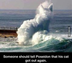 Poseidon's cat.
