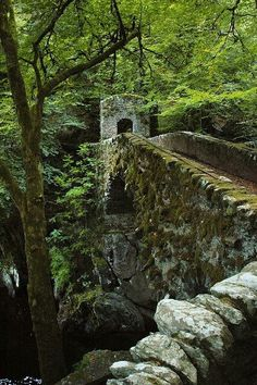Old Stone Bridge & gate house. SCOTLAND