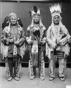 Three Blackfoot Chiefs wearing traditional clothing including typical eagle feather war bonnet and two straight-up headdresses. Description from pinterest.com. I searched for this on bing.com/images