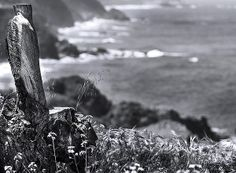 Superb Image by Denise! Contemplateby Denise Dube #blackandwhitephotography #ocean-photography