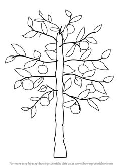 Learn How to Draw an Apple Tree (Trees) Step by Step : Drawing Tutorials Branch Drawing, Leaf Drawing, Plant Drawing, Apple Tree Drawing, Tree Drawing Simple, Deciduous Trees, Flowering Trees, Leaves Sketch, Directed Drawing