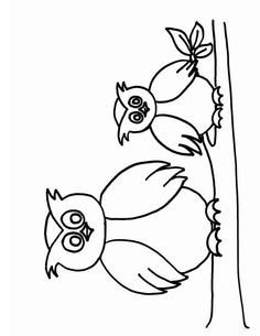 Coloriage hibou