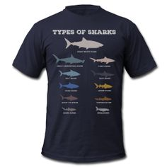 Types of Sharks ~ 316