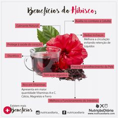 Cabbage, Healthy Recipes, Healthy Food, Nutrition, Tea, Vegetables, Instagram Posts, Hibiscus, Natural