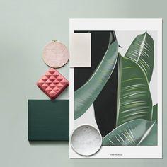 Inspiratiebeeld Colours and Textures/Kleuren en Texturen Colour Schemes, Color Patterns, Office Color, Illustration Arte, Botanical Illustration, Illustrations, Design Art, Graphic Design, Design Shop