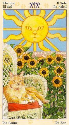 The Sun ~ Tarot of the Pagan Cats deck