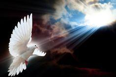 """""""El orgullo y el egoísmo del hombre siempre crean divisiones, levantan muros de indiferencia, de odio y de violencia. El Espíritu Santo, por el contrario, capacita a los corazones para comprender las lenguas de todos, porque reconstruye el puente de la auténtica comunicación entre la tierra y el cielo. El Espíritu Santo es el Amor""""  (Benedicto XVI, homilía del 4 de junio de 2006)."""