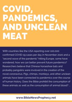 COVID, Pandemics, and Unclean Meat — Bible News Prophecy Radio Human Digestive System, Prophecy Update, Jesus Second Coming, Bible News, Daily Bible, Pope Francis, Meat, Corona
