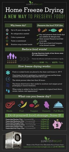 This educational infographic explains how home freeze drying has changed how people are creating their own custom, home food storage. Emergency Food, Survival Food, Emergency Preparedness, Survival Tips, Survival Videos, Survival Weapons, Survival Stuff, Harvest Right Freeze Dryer, Do It Yourself Food