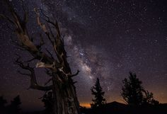 Awesome night sky photo