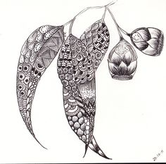gum leaves zentangle